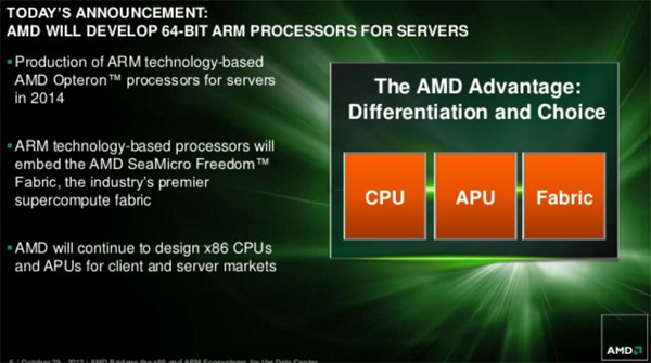 amd_arm_slide_1.jpg (47548 bytes)